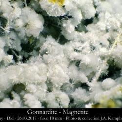 Gonnardite - Magnetite Dld Graulay 26.03.2017 18mm